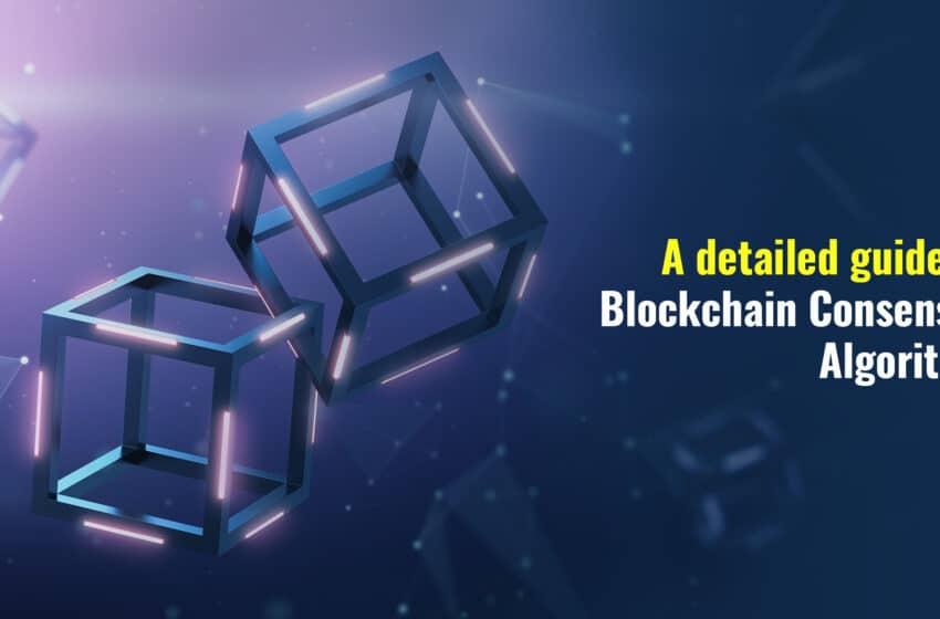 Blockchain Consensus Algorithm